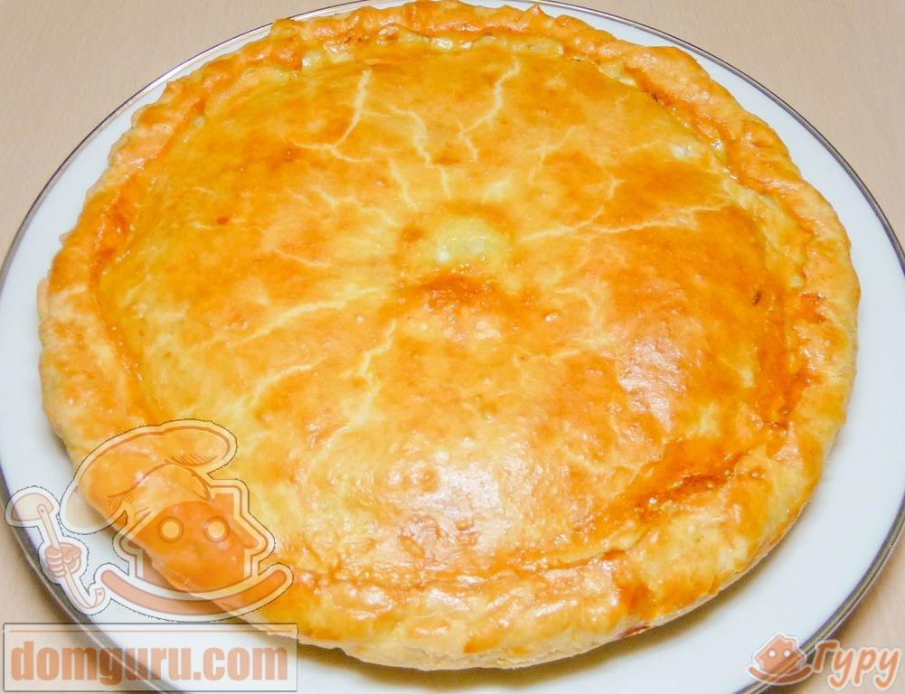 Как сделать мясной пирог фото 319