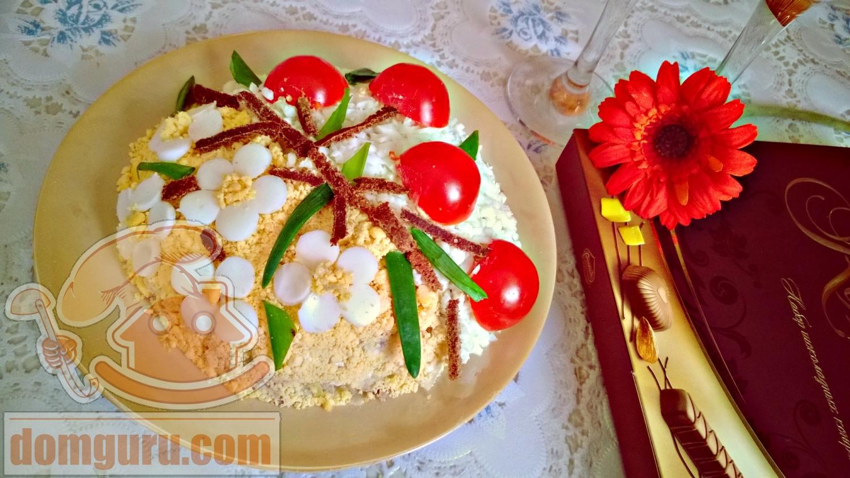 Фото цветы в горшках на белом фоне