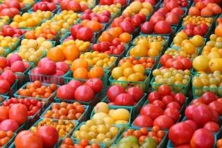 Если, например, ставится задача выращивать ранние помидоры в открытом грунте...