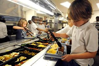 Essay About Food Safety In School Canteen